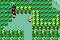 Pokemon Ambar GBA ROM Hacks