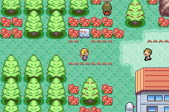 Pokemon Marble GBA ROM Hacks
