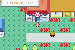 Pokemon Marble Screenshot