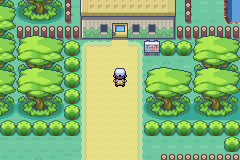 Pokemon Orchid GBA ROM Hacks