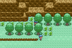 Pokemon Third Element Screenshot