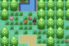 Pokemon Waterfall Screenshot