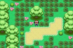 Pokemon Advanced Adventure GBA ROM Hacks