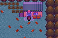 Pokemon Hack Screenshot