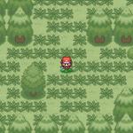 Pokemon Shrouded Chaos