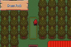 Pokemon Resolute Screenshot
