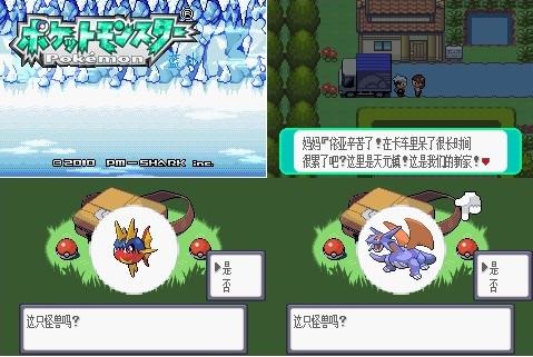 Pokemon emerald lanbing final chapter screenshot