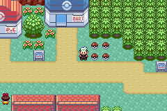 Pokemon Expert Emerald Screenshot