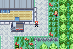 Pokemon Fire Red: Backwards Edition GBA ROM Hacks