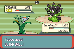 Pokemon Kanto Black Screenshot
