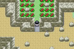 Pokemon Valen GBA ROM Hacks
