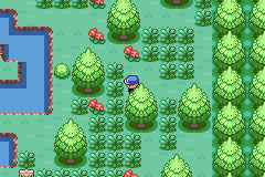 Pokemon Warped GBA ROM Hacks