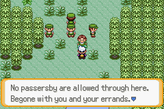 Pokemon Citrite Screenshot