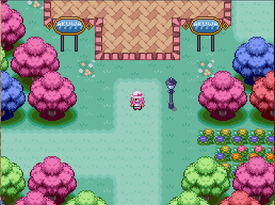 Pokemon Rejuvenation Screenshot