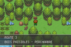 Pokemon Version Eclat Pourpre GBA ROM Hacks