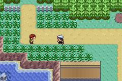 Pokemon Vortex Version Screenshot