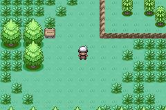 Pokemon White Amethyst Screenshot