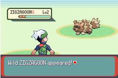 Pokemon Wonder Guard Screenshot