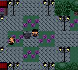 Pokemon Pilar/Xare Screenshot