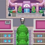 Pokemon Solar Light & Lunar Dark