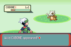 Pokemon BlackGranite X Screenshot