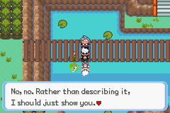 Pokemon Burning Ruby Screenshot