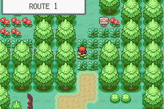 Pokemon Conjure GBA ROM Hacks