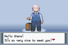 Pokemon DR Screenshot