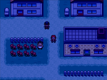 Pokemon Dusk Screenshot