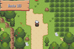 Pokemon Emerald Dreams Screenshot