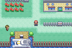 Pokemon Hero's Path Screenshot