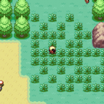 Pokemon Marigold