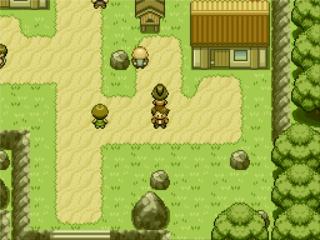 Pokemon Thyme Screenshot