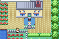 Pokemon Flora Flame Screenshot