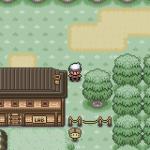 Pokemon Green Forest