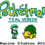 Pocketmans Teal