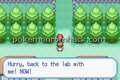 Pokemon Flare GBA ROM Hacks