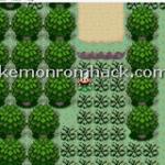 Pokemon 0x800000