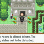 Pokemon Misanthropy Version 2