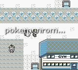 Pokemon Metallic GBC ROM Hacks