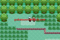 Pokemon Emerald Balanced GBA ROM Hacks