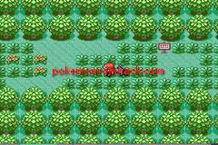 Pokemon: Let's Go, Shinx! RMXP Hacks