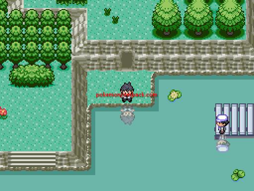 Pokemon Shattered Stones RMXP Hacks