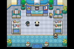 Pokemon Panda RMXP Hacks
