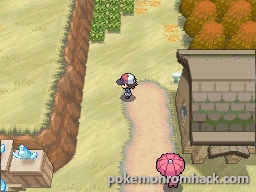 Pokemon Hoenn White EX NDS ROM Hacks