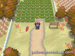 Pokemon Omega Paradox NDS ROM Hacks