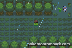 Pokemon Purple GBA ROM Hacks