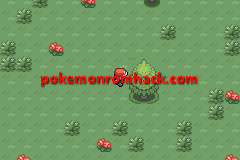 Pokemon Maia Version GBA ROM Hacks