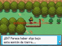 Pokemon Sacred Gold Spanish NDS ROM Hacks