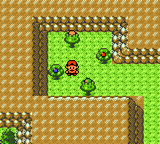 Pokemon Sour Crystal GBC ROM Hacks